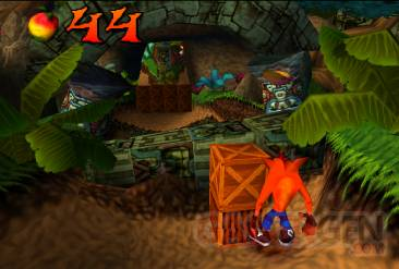 crash bandicoot 10.07.2013.